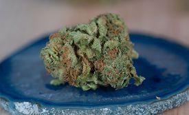 stock photo of agate  - Close up macro of Papaya Medicinal Medical Marijuana on blue agate - JPG