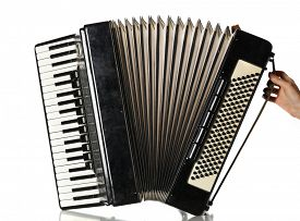 picture of accordion  - Accordion isolate on white - JPG