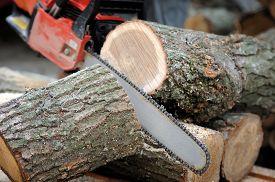 stock photo of man chainsaw  - Close - JPG
