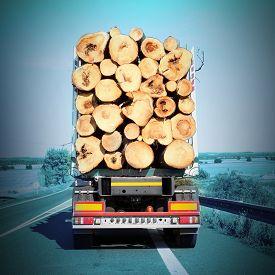 stock photo of logging truck  - Logging truck on the highway - JPG