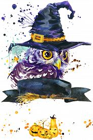 image of owls  - Halloween owl and witch hat - JPG