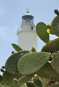 picture of mola  - La Mola Lighthouse in Formentera Balearic Island - JPG