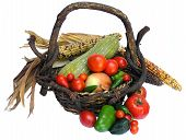 Autumn Garden Harvest In Rustic Basket