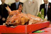 ceremonial pig presentation,