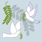 picture of olive branch  - dove with olive branch illustration - JPG