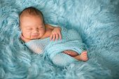 Happy Smiling Newborn Baby In Wrap, Sleeping Happily In Cozy Fur poster
