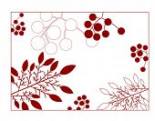 leaves and berries background frame vector