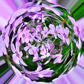 world of purple flowers-globe filled with flowers