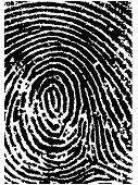 Fingerprint Crop 2
