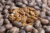 Fresh Shelled And Un-shelled Organic Pecan Nuts poster