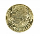 New Zealand One Dollar Coin Isolated On White Background