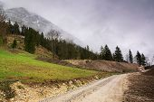 Cycling On Alps On A Rainy Day. Rocky Road In Mountain Nature. Green Forest Road. Nature. Road. Natu poster