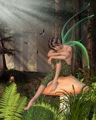 picture of faerie  - Fairy Boy with green gossamer wings sitting on a toadstool in a woodland glade half - JPG
