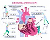 Human Health. Human Disease.prevention, Treatment And Diagnosis Of Heart Diseases, Cardiovascular Di poster