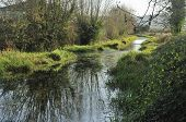 Disused Stroudwater Navigation Canal