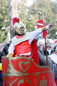 Carnival in Velika Gorica - Topics Asterix and Obelix 6