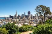 San Francisco Downtown From Ina Coolbrith Park. Russian Hill District, San Francisco, California, Us poster