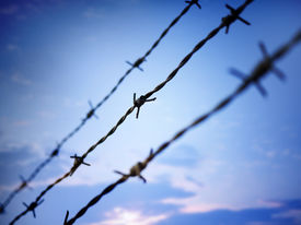 image of barbed wire fence  - Photo of barbed wire against evening sky - JPG