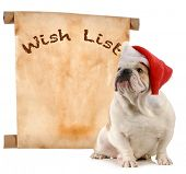 pet christmas wish list - english bulldog santa with a christmas wish list