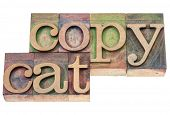 copycat  - isolated text in vintage letterpress wood type blocks stained by color inks