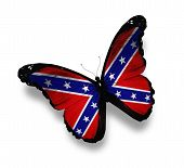 stock photo of rebel flag  - Confederate Rebel flag butterfly isolated on white - JPG