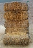 Bale Of Hay 2