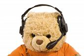 Bear In Old Ear-phones