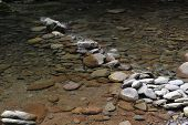 Mountain river with blue clean water and stones at Catskils mountains upstate NY