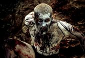 picture of gruesome  - young man with a zombie body painting - JPG