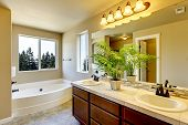 stock photo of combinations  - New home bathroom interior with shower and bath combination wood cabinet and toilet - JPG