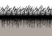 Illustrated silhouette of a grassy meadow with underground roots