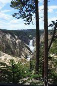 Yellowstone Lower Falls panorama 5