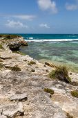 Rustic Tropical Beach Coastline Antigua
