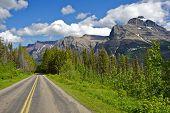 Montana Journey