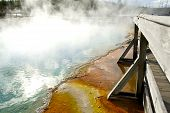 Yellowstone Steaming Pool