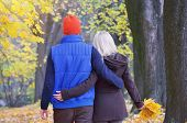 Loving couple walking arm in arm in a beautiful autumn park