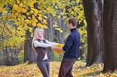 Loving couple in the autumn forest with yellow leaves