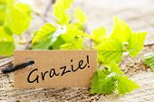 A Label With the Italian Word Grazie