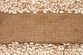 Pumpkin Seeds Were Lying On Sackcloth