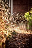 Garden path with wrought iron fence