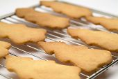 Christmas Tree Cookies 01