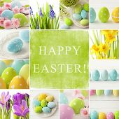 foto of easter flowers  - Easter collage - JPG