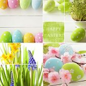 Easter collage. easter eggs and spring flowers