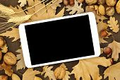 Tablet with blank screen on Autumn background