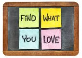 find what you love advice - sticky notes on isolated vintage blackboard