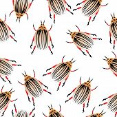 pic of potato bug  - Colorado potato beetles seamless pattern - JPG