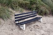 Bench Covered In Sand