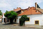 A Street In The Szentendre Town