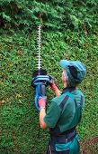 Gardener Cutting Thuja Hedge With Hedge Clippers