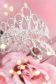 Glitter Crown With Pink Roses